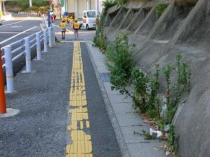 通学路清掃リポート ~雑草の中を登校~