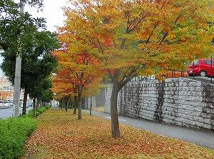 2014.11.17soutyou (1)