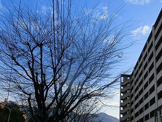 2014.12.8soutyou03