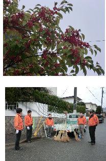 通学路清掃リポート ~雨が止んだ~