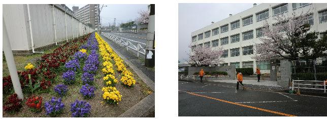 通学路清掃リポート ~暖かい春の雨~