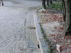 公園清掃リポート ~爽やかな朝礼~