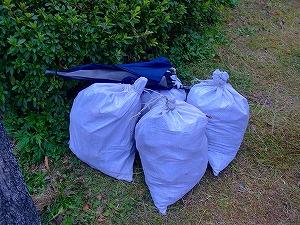 公園清掃リポート ~なぜゴミが多い?~