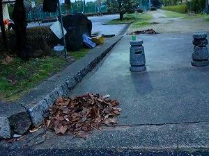 公園清掃リポート ~ここまで溜まるか~