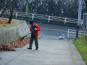 公園清掃リポート ~落ち葉の山~