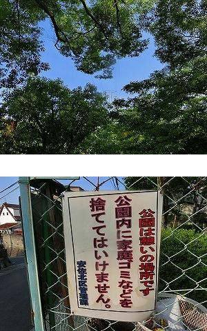 公園清掃リポート ~高1平井くんが初参加~