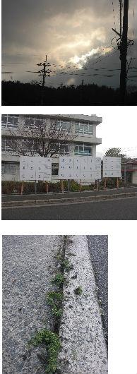 通学路清掃リポート ~春の粉雪が舞う~