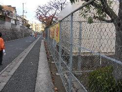 通学路清掃リポート ~サクラの落ち葉も終わり~