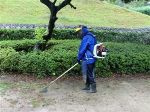 公園清掃リポート ~秋雨のもとで~