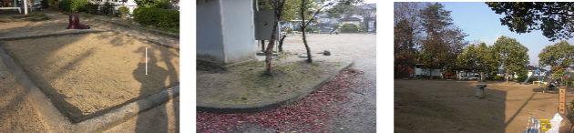 公園清掃リポート ~3日連続の朝雪~