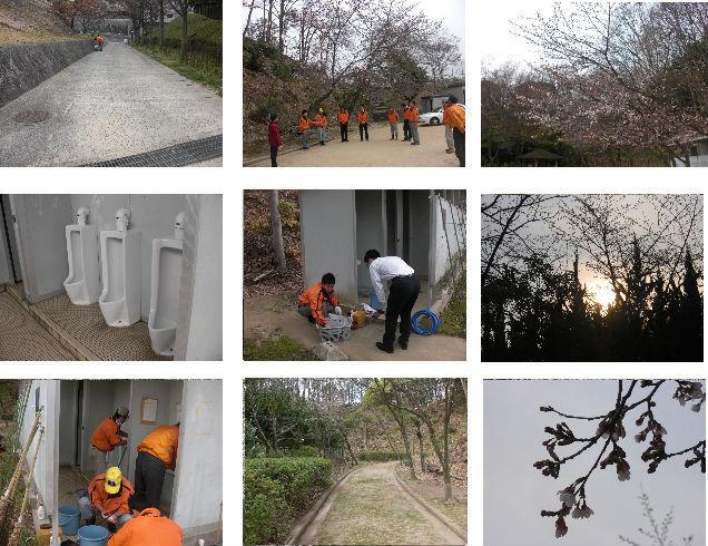 公園清掃リポート ~桜が3分咲き~