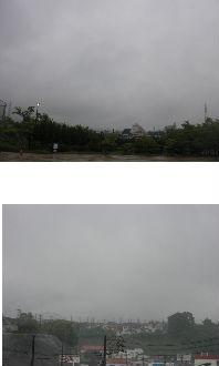 公園清掃リポート ~草の根は広く深い~