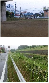 早朝清掃リポート ~雨に濡れる~