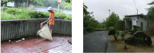 公園清掃リポート ~梅雨の最中~