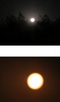 早朝清掃リポート ~白い月に黄色の太陽~
