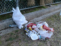 公園清掃リポート ~霜で春が遠のく~