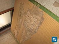 畳を食べられた跡