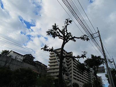 2015.10.2soutou (4)