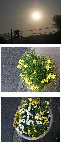 早朝清掃リポート ~やっぱり春は晴れがいい~