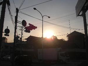 CIMG8546_copy