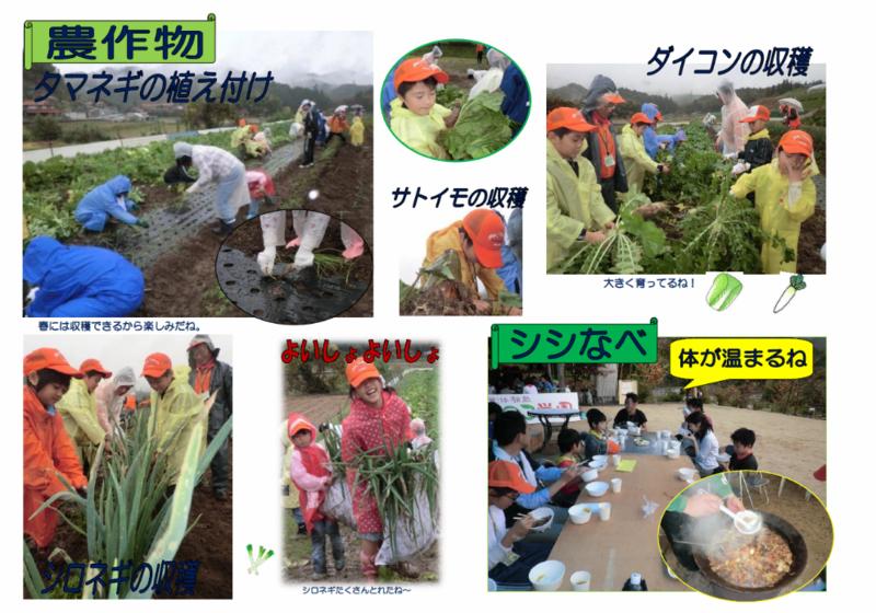 竹の子学園ニュース第73号2面_copy-thumb-800x560-3922