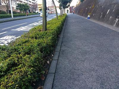 会社近隣0126 (2)